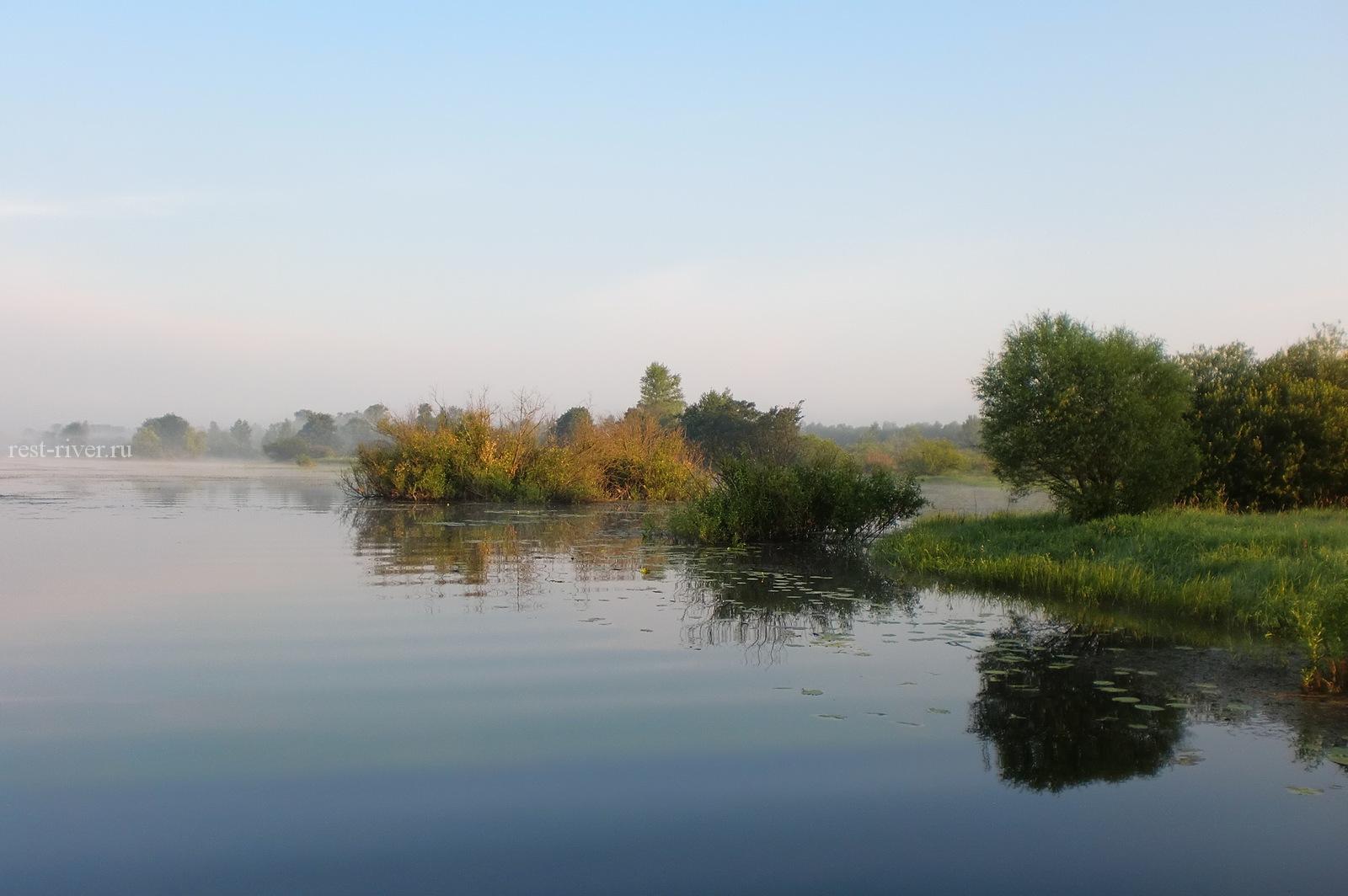 фото реки утром