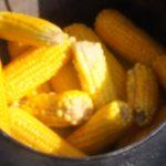 Кукуруза на костре. Рецепт кукурузы сваренной в казане на костре.