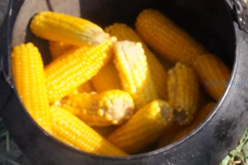 рецепт кукурузы - фото сваренных пачатков