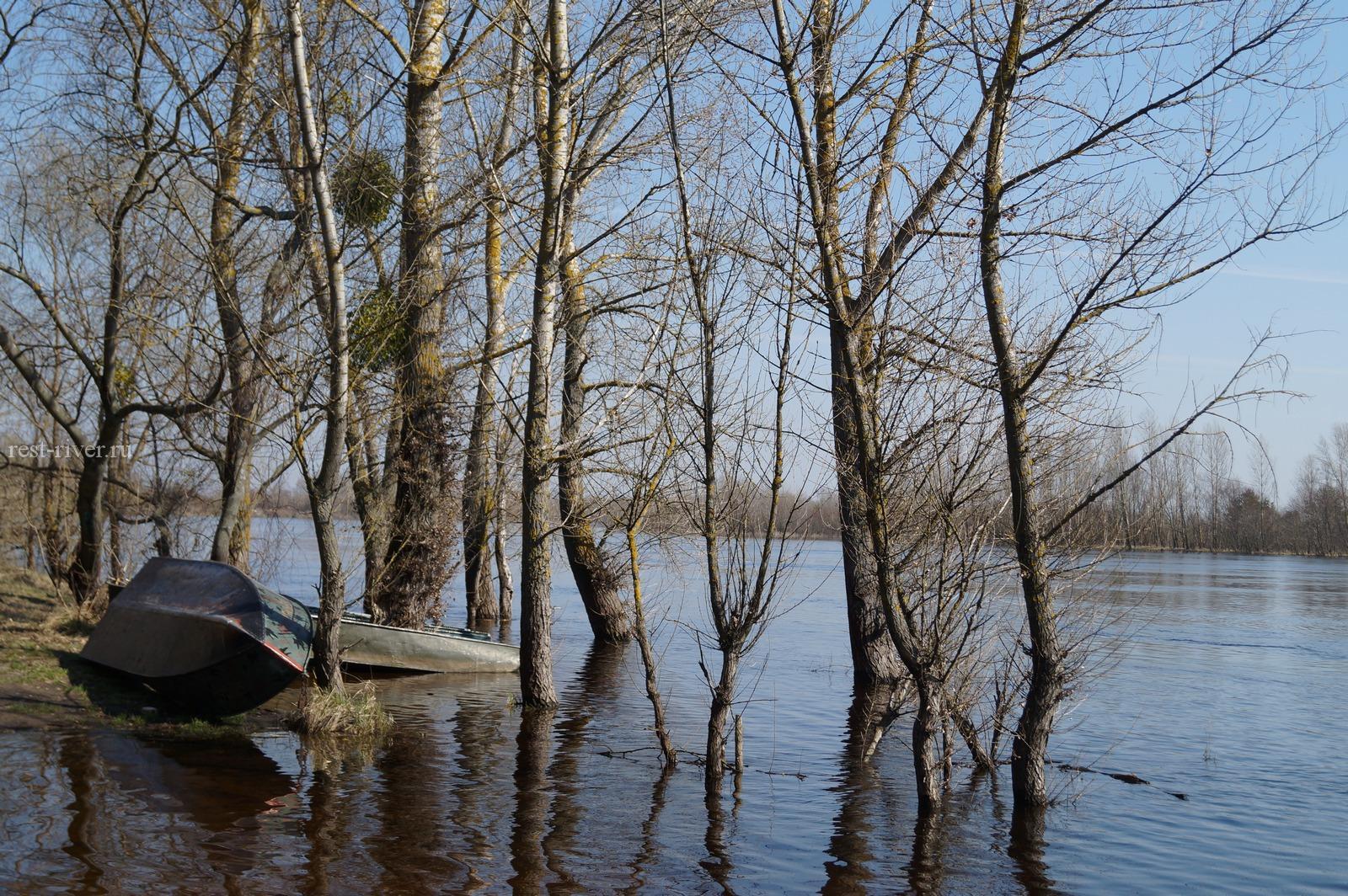 красифое фото режим реки паводок