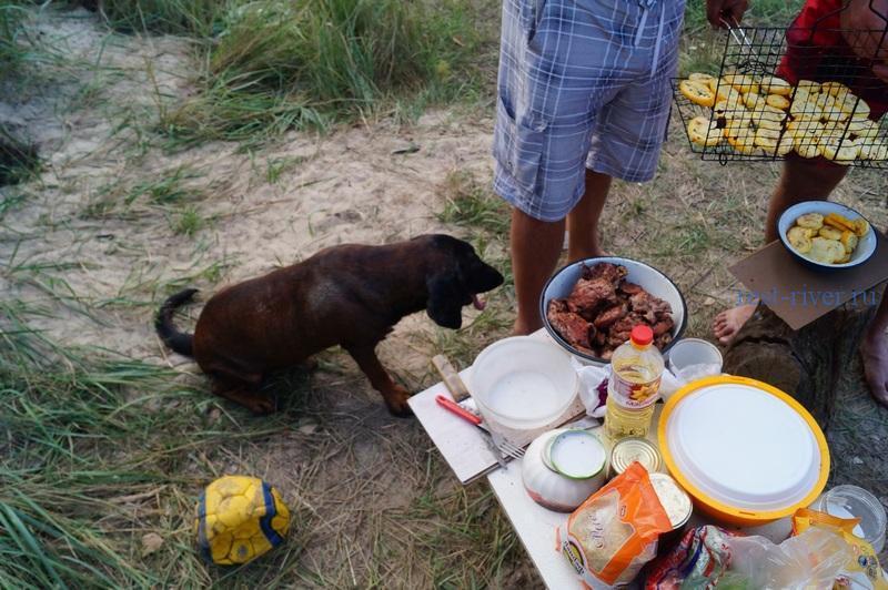 столик для приготовления пищи в палаточном лагере