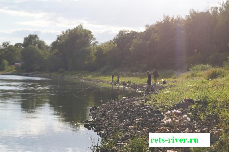 суводь перспективное место ловли рыбы на реке