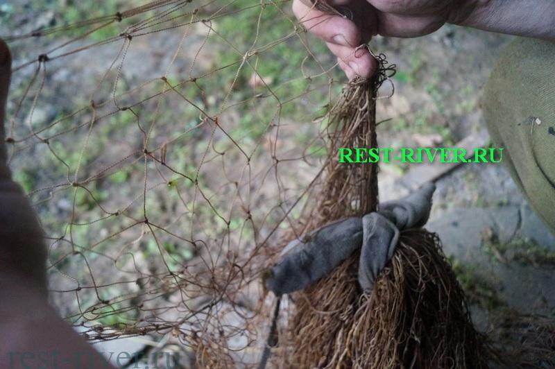 частик сети рыжовки