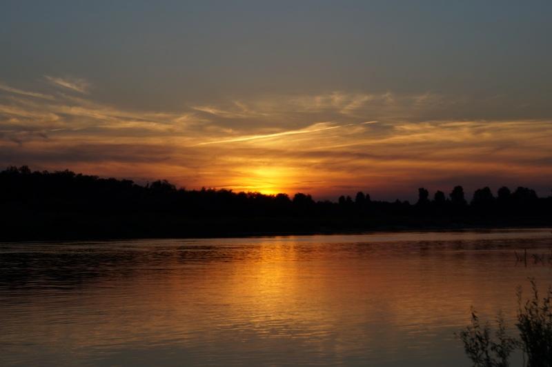 ночь - лучшее время для ловли сома