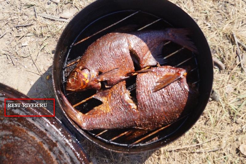 фото переносная коптильня горячего копчения с рыбой