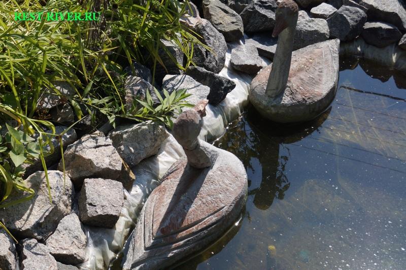 декоративные утки для пруда