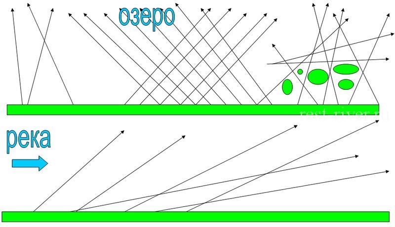 схема ловли на воблер для начинающих салмо бутчер