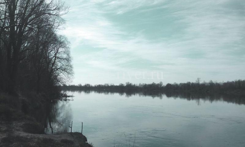 Суводь, обратное течение воды за выступом берега место ловли рыбы