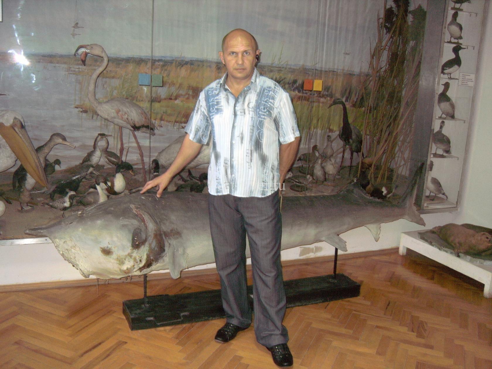 рыболовный трофей в музее
