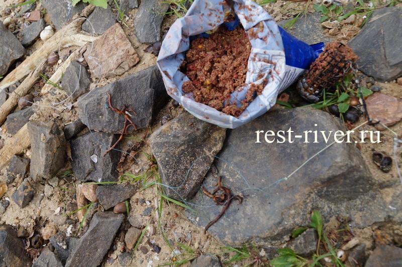 ловля сома на червя с прикормкой