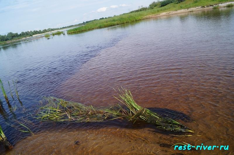 фото брод песчаный на малой реке