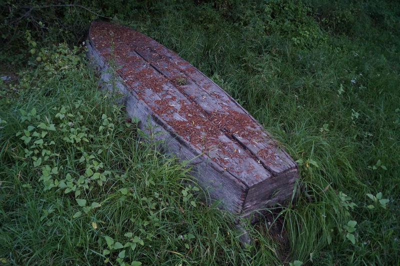 фото дно брошенной деревянной лодки