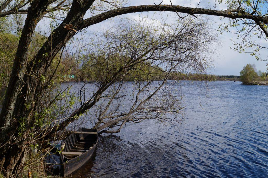 деревянная лодка фото