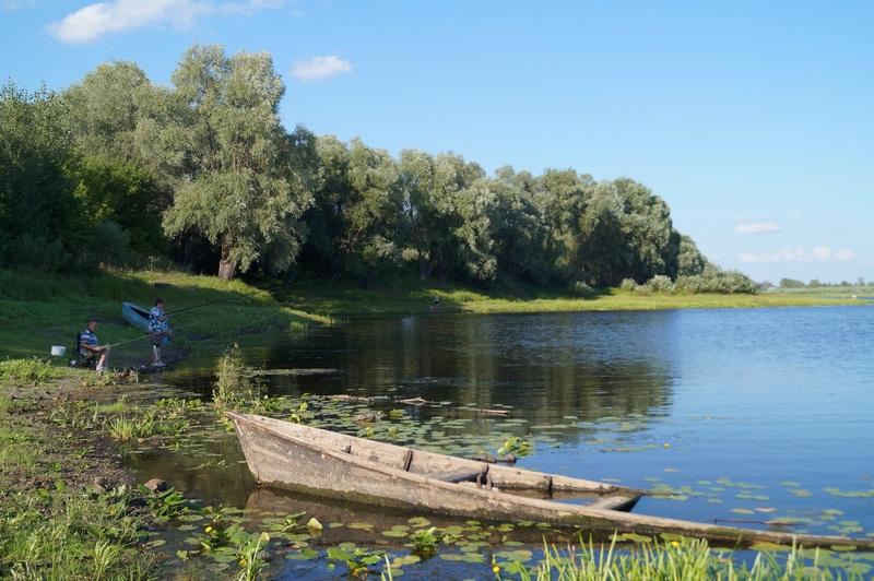 летний отдых с удочкой на реке