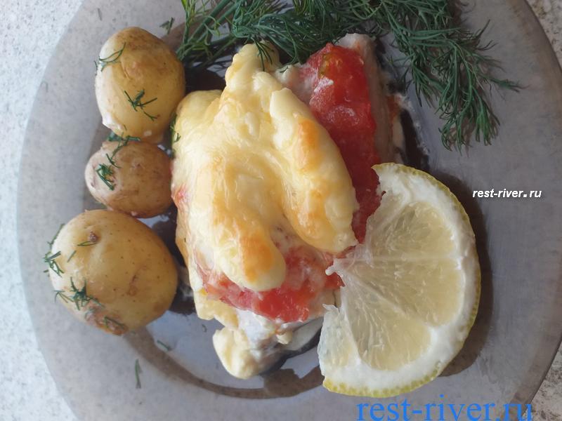судак запечённый с помидорами и сыром